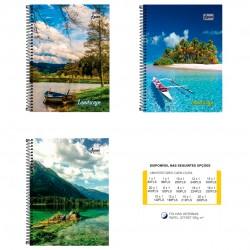 Caderno 12x1 240 Folhas Landscape