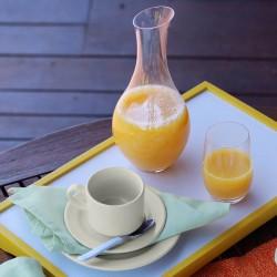 Xícara De Chá Plus Com Pires 200ml