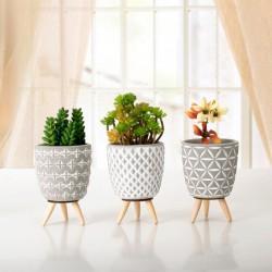 Vaso Decorativo Com Pé De Madeira